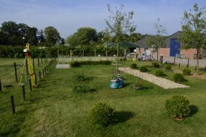 Trimbot in the garden